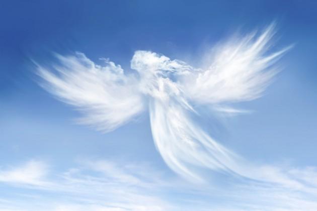 Angels-630x420